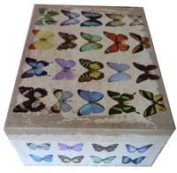 boite-retro-papillon