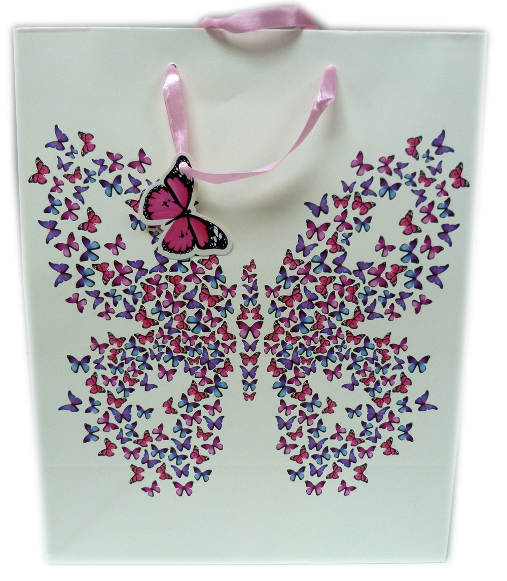 Sac papillon