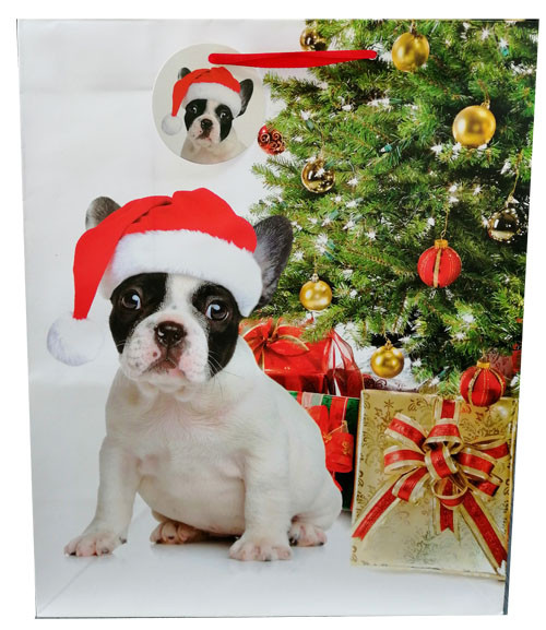 Chien sapin